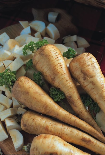 Parsnip Tender and True